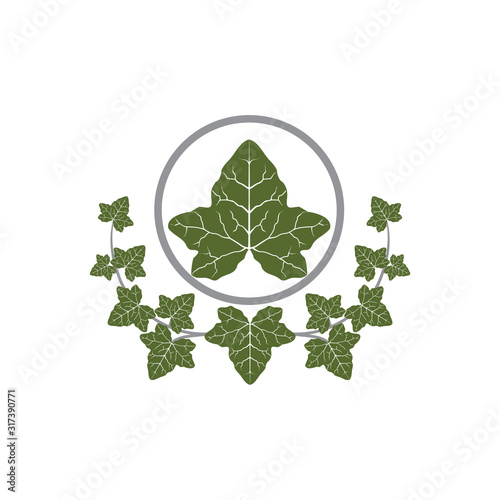 Fotografía Vector of Ivie leaf design eps format, suitable for your   design needs, logo, illustration, animation, etc