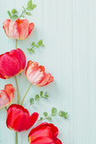 Fototapeta Tulipany - red tulips on green wooden background