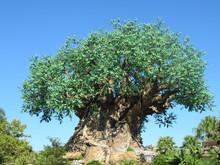 Tree Of Life At Disney's Anima...
