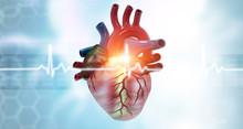 Anatomy Of Human Heart On Ecg Medical Background. 3d Render.