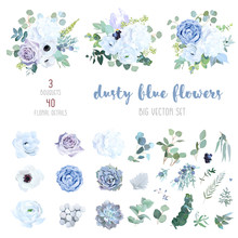 Dusty Blue, Pale Purple Rose, ...