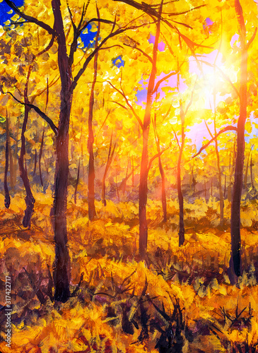Fototapety, obrazy: Oil painting canvas Sunset Or Sunrise In autumn Forest Landscape. Sun Sunshine Sunlight And Rays Through autumn Woods Trees In warm Forest. Beautiful Scenic View art