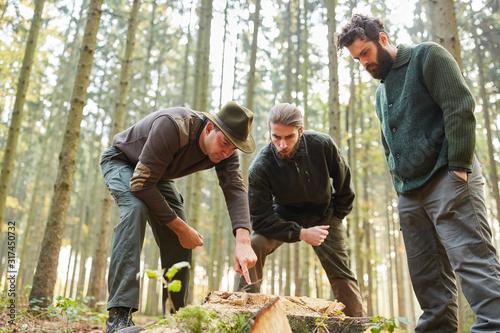 Fotografía Förster in Ausbildung analysieren Baumschaden