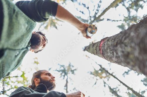 Fotomural  Förster markieren Baumstamm mit roter Farbe