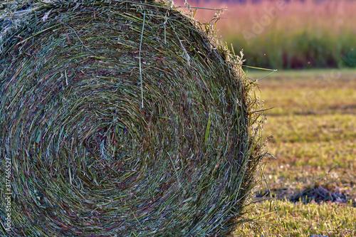 Carta da parati hay bale of straw in the field