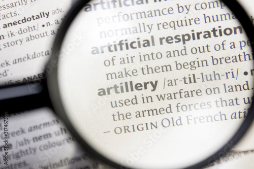 Artillery word or phrase in a dictionary. Wallpaper Mural