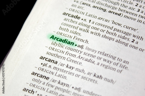 Arcadian word or phrase in a dictionary. Canvas-taulu