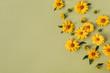 Leinwanddruck Bild - Flat lay yellow daisy flower buds. Top view.