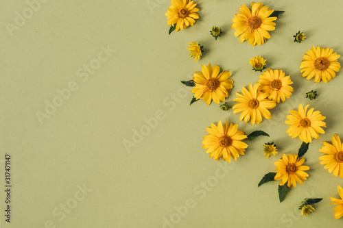 Flat lay yellow daisy flower buds. Top view.