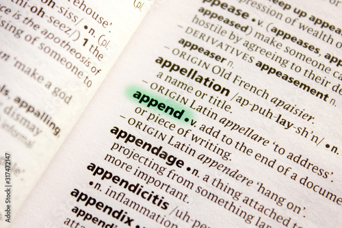 Append word or phrase in a dictionary. Canvas Print