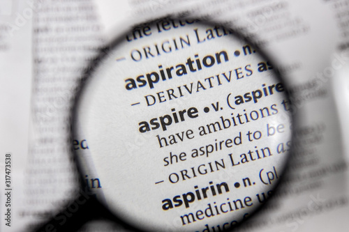 The word or phrase aspire in a dictionary. Wallpaper Mural