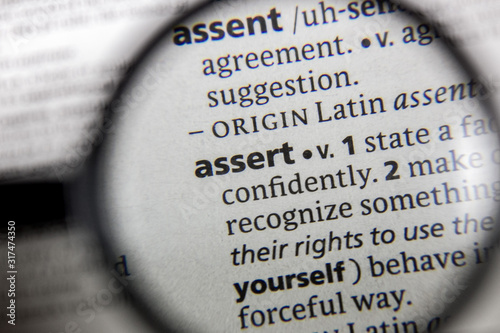Photo The word or phrase assert in a dictionary.