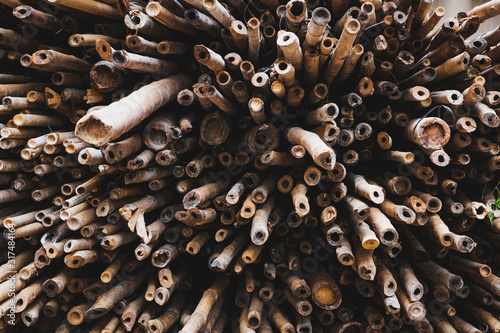 Fotografía Bamboo poles closeup used for scaffolding on building  site