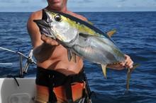 Big Game Fishing Fisherman Shows Yellowfin Catch On Katamaran
