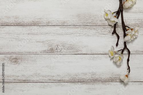 Fototapeta 春の花と白板の背景