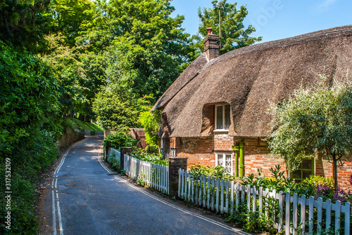 Canvas Dorset cottage with a thatched roof in summer