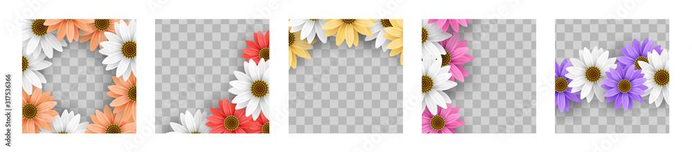Fototapeta Set of colorful gerbera daisy flower floral frame on transparent background vector template