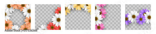 Fotografie, Obraz Set of colorful gerbera daisy flower floral frame on transparent background vect