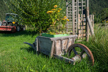 Jolie Brouette Dans L'herbe