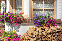 Window Decorated With Petunias And Other Flowers And Firewood, South Tyrol, Italy