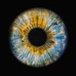 Leinwandbild Motiv human iris
