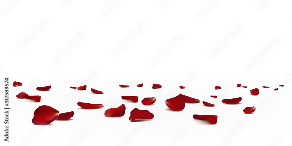 Fototapeta Falling red rose petals seasonal confetti, blossom elements flying isolated. Abstract floral background with beauty roses petal. design for greeting cards. Rose petals fall to the floor