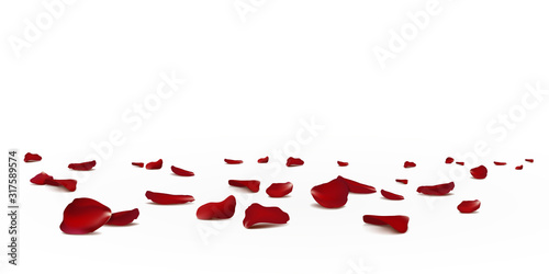 Falling red rose petals seasonal confetti, blossom elements flying isolated Canvas Print