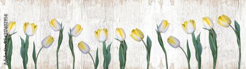 Plakat Wiosenna panorama z kwiatów tulipana