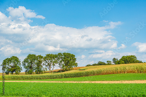 Obraz na plátně Amish country field agriculture, harvest, farm, barn in Lancaster, PA US