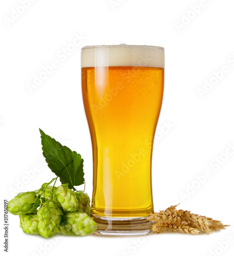 Платно Light Ipa beer in glass with branch hops cones and wheat ears isolated on white