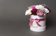 Flowers In Bloom: Multi-colore...