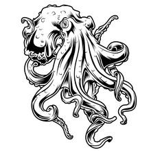Big Octopus Drawing Black & White Vector Illustrtion 14