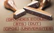 Etudes supérieures. Enseignement supérieur en France