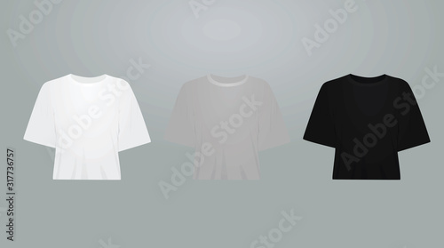 Valokuvatapetti White, grey and black women crop top set. vector illustration