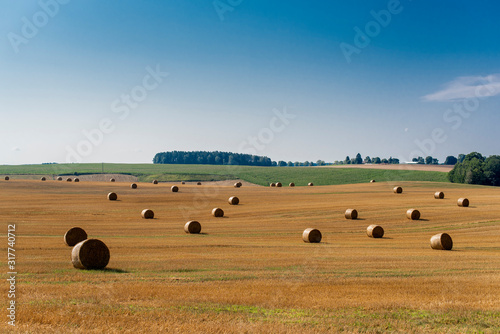 Rural landscape of a field with rolled up bales of hay Canvas Print