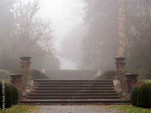 Fotografía The old stairs in the park on a foggy autumn morning at the cemetery