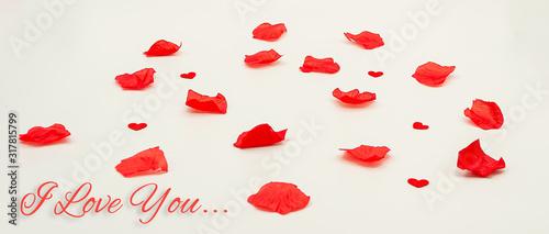 carte ou bandeau pétale coeur rouge i love you Canvas Print
