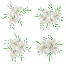 Watercolor White Lily Flower B...