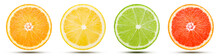 The Collection Of Citrus Fruit...