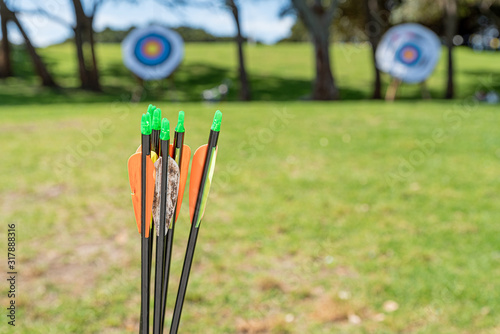 archery arrows waiting to be shoot Wallpaper Mural