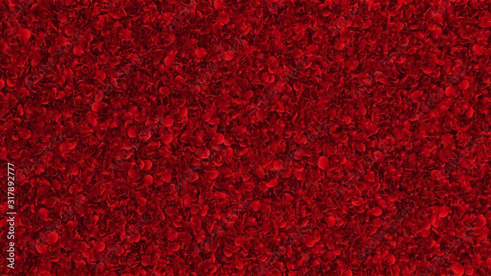 Fototapeta carpet of red rose petals