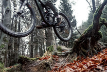 Mountainbike / Winter Im Sauer...