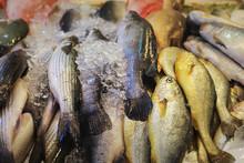Fresh Fish At Wet Market, Sing...