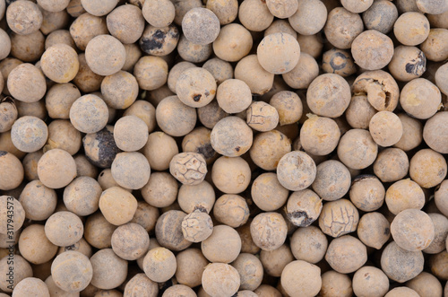 Photo White pepper and background