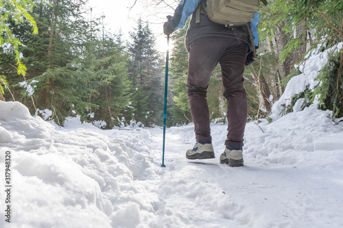 Brave mountaineer woman walking alone with rucksack in the snow, holding a blue stick on the woodland Canvas Print