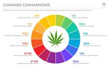Cannabis Terpenes Horizontal B...