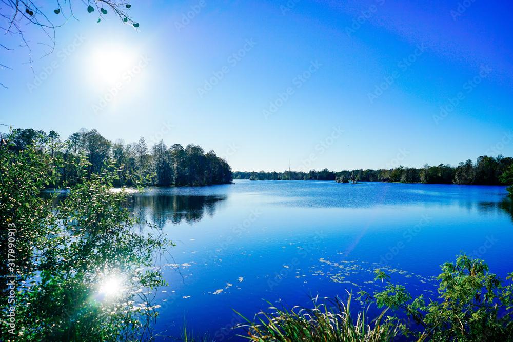 Fototapeta Hillsborough river at Tampa, Florida