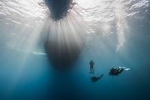 People Swimming Undersea