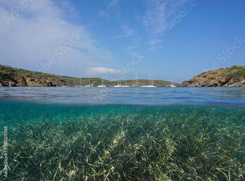 Mediterranean sea coastline with sailboats moored in a bay and seagrass underwater, split view over and under water surface, Spain, Costa Brava, Catalonia, Cap de Creus, Cadaques, Badia de Guillola #318059368