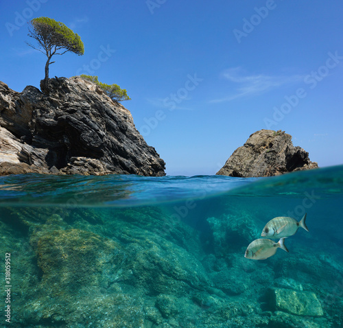 Seascape in the Mediterranean sea, rocky coast split view over and under water surface, Spain, Costa Brava, Roses, Catalonia, Cala Rostella #318059512